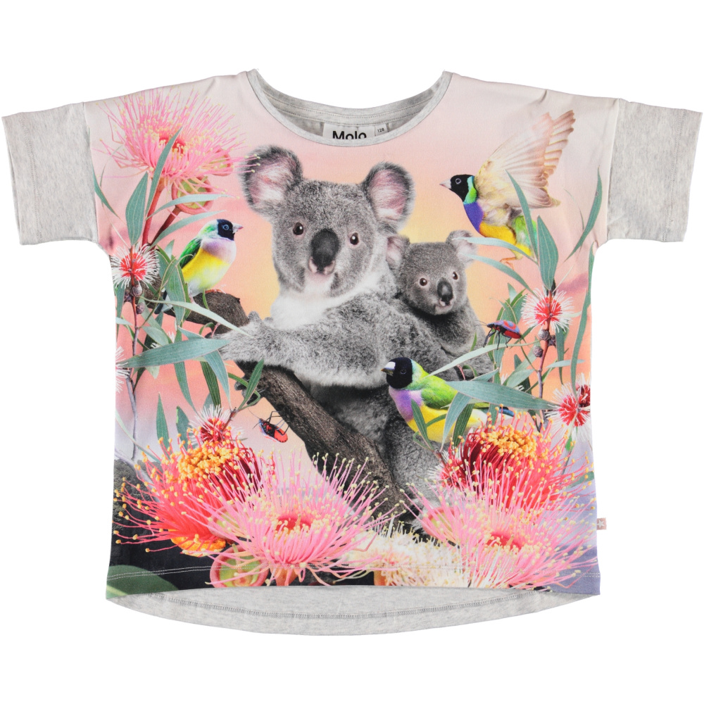Molo, Raeesa t shirt koala love Engler og pirater